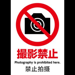 dp-prohibition01